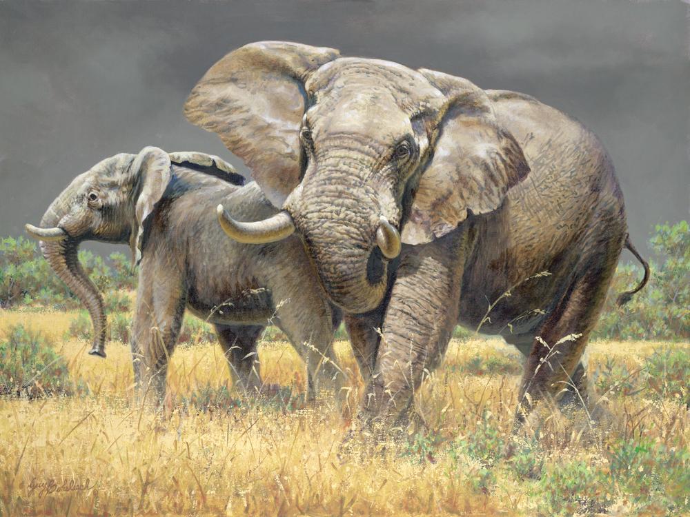 """Aggravated Elephants""  -  30"" x 40"" ""Aggravated Elephants"" - Elephants  Elephant Paintings  Elephant Art"