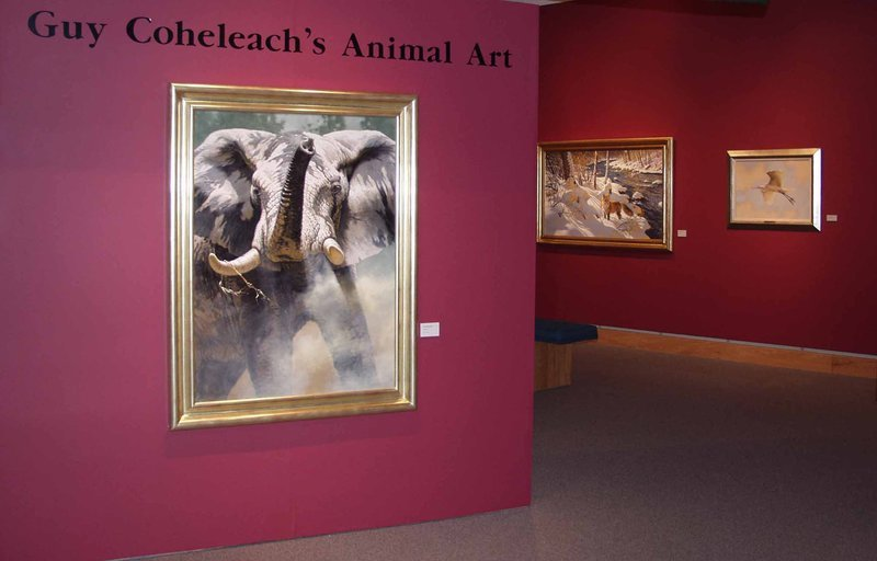 Guy Coheleach's Animal Art Exhibit and Show Animal Art Exhibit  Wildlife Art Exhibits  Animal Art Shows