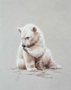 """Baby Polar Bear""  -  20"" x 16"" ""Baby Polar Bear"" - Critters  Small Game Paintings  Small Animals in Art"