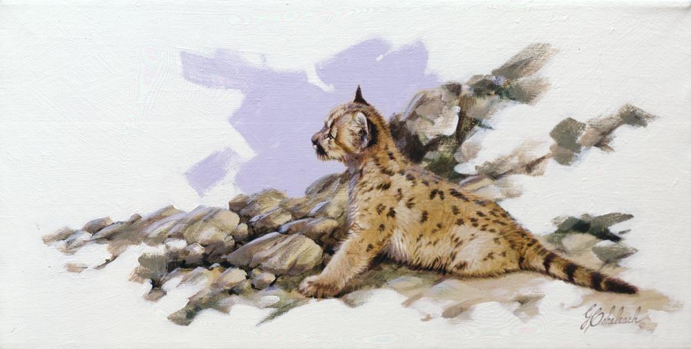"""Baby Puma""  -  12"" x 24"" ""Baby Puma"" - American Cats  American wild cats  Wild Felines of America"