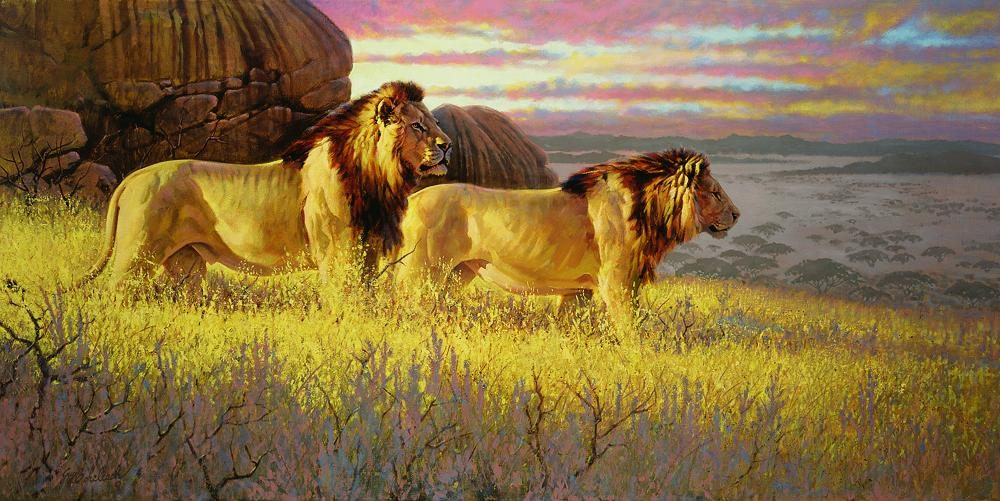 """Bachelor Evening"" ""Bachelor Evening"" - Lions  Lion Art  Lion Paintings"