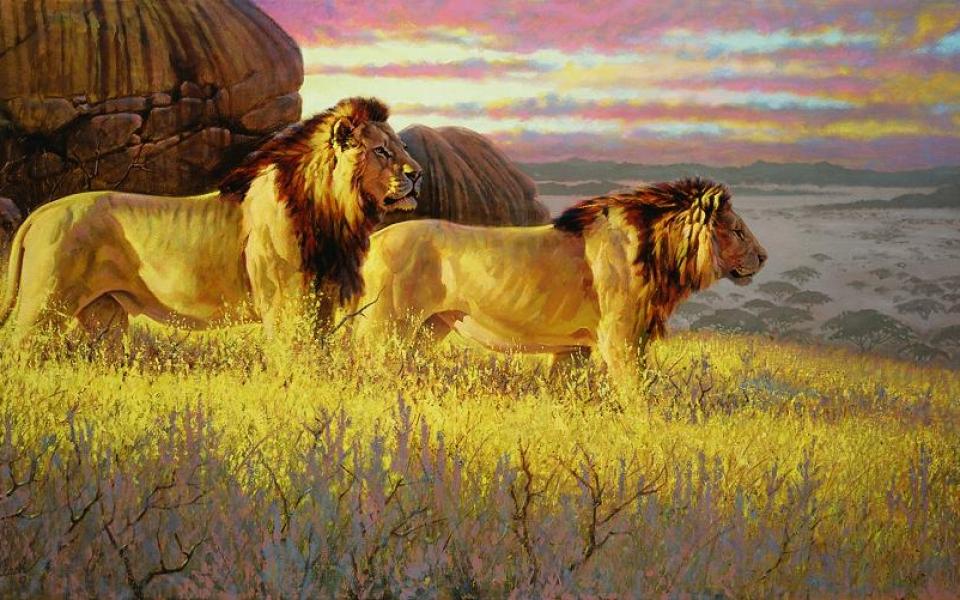 """""""Bachelor Evening"""" """"Bachelor Evening"""" - Lions  Lion Art  Lion Paintings"""