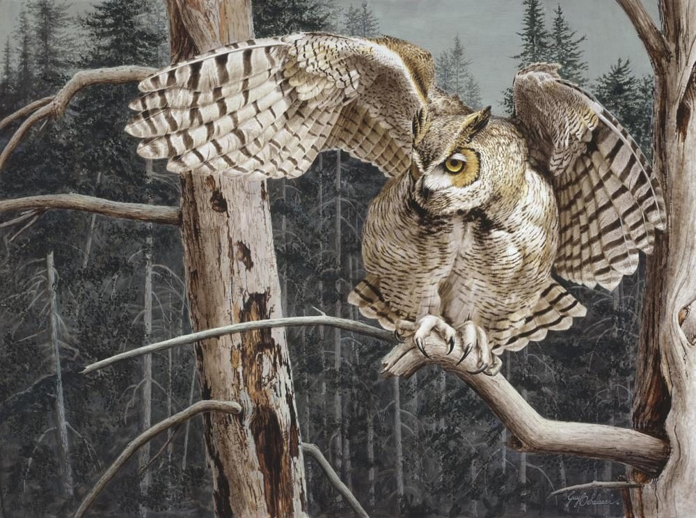 """Balancing Act""  -  30"" x 40"" ""Balancing Act"" - Owls  Owl Paintings  Owl Artwork"
