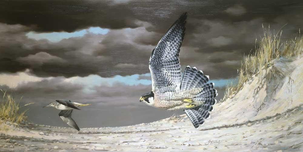"""Barrier Beach Chase""  -  36"" x 72"" ""Barrier Beach Chase""  Birds of Prey  Raptors"