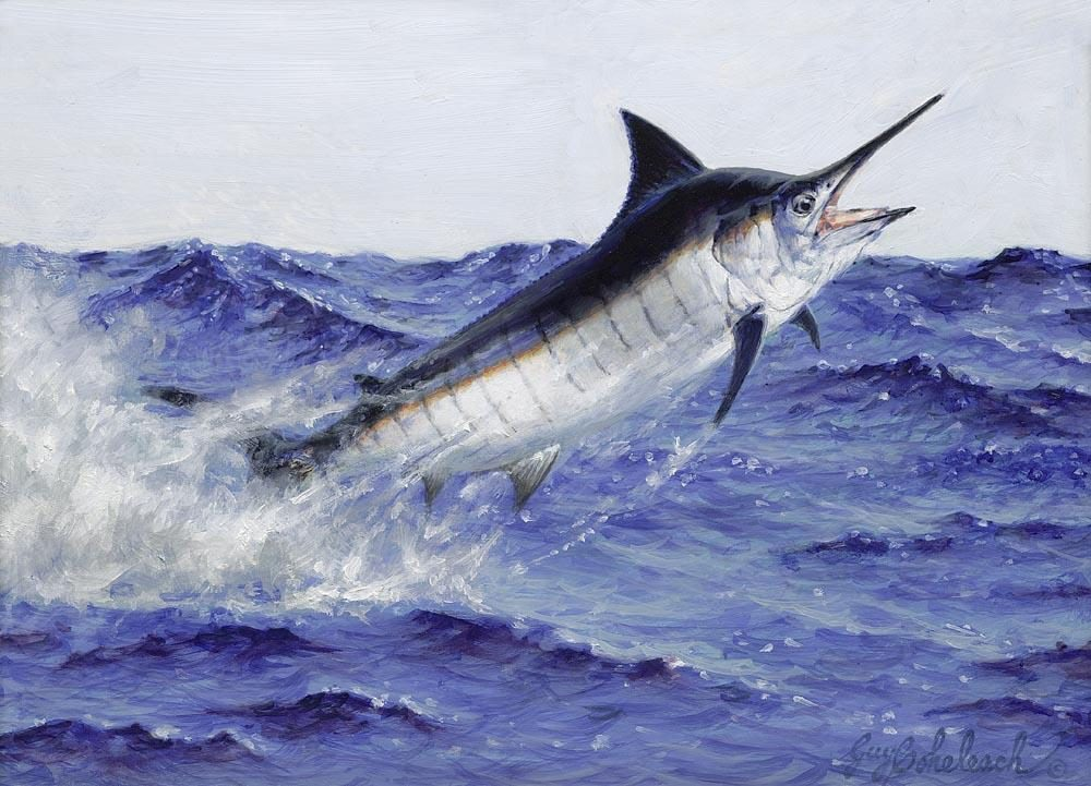 """Black Marlin""  -  9"" x 12"" ""Black Marlin"" - Misc  Art  Paintings"