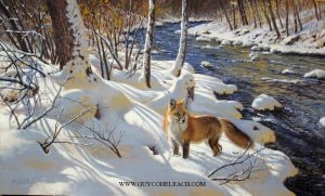 """Black River Fox""  -  36"" x 60"" ""Black River Fox"" - Canine  Wild Canine Paintings  Wolf and Fox Artwork"