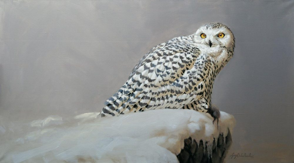"""Black on White on Grey""  -  24"" x 44""  ""Black on White on Grey"" - Owls  Owl Paintings  Owl Artwork"