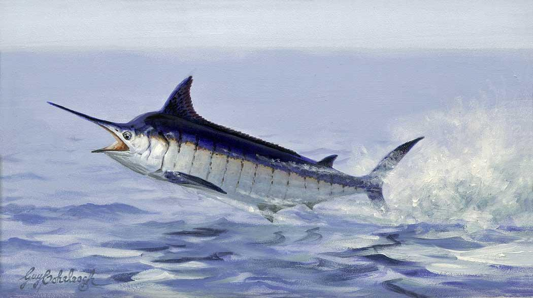 """Blue Marlin""  -  8"" x 14"" ""Blue Marlin"" - Misc  Art  Paintings"