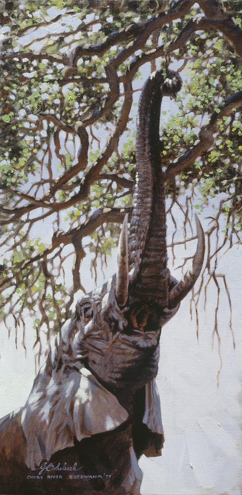 """Botswana Elephant""  -  12"" x 24"" ""Botswana Elephant"" - Elephants  Elephant Paintings  Elephant Art"