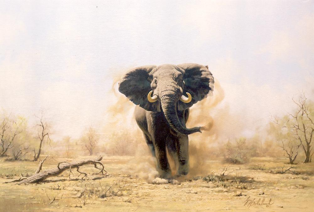 """Charging Elephant""  -  30"" x 40""  ""Charging Elephant"" - Elephants  Elephant Paintings  Elephant Art"