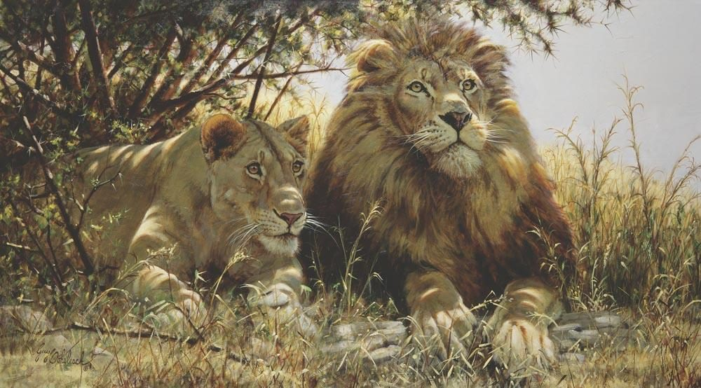 """Checking Out the Menu""   -  24"" x 44"" ""Checking Out the Menu"" - Lions  Lion Art  Lion Paintings"