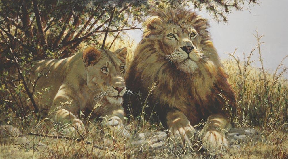 """""""Checking Out the Menu""""   -  24"""" x 44"""" """"Checking Out the Menu"""" - Lions  Lion Art  Lion Paintings"""