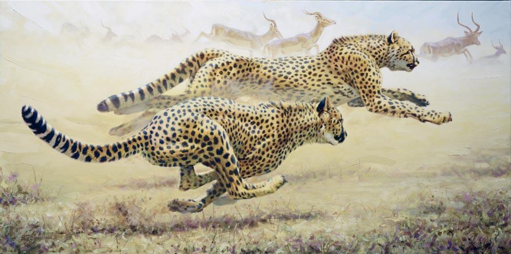"""Cheetah Chase""   -  36"" x 72"" ""Cheetah Chase""  - Cheetahs  Cheetah  cheeta"