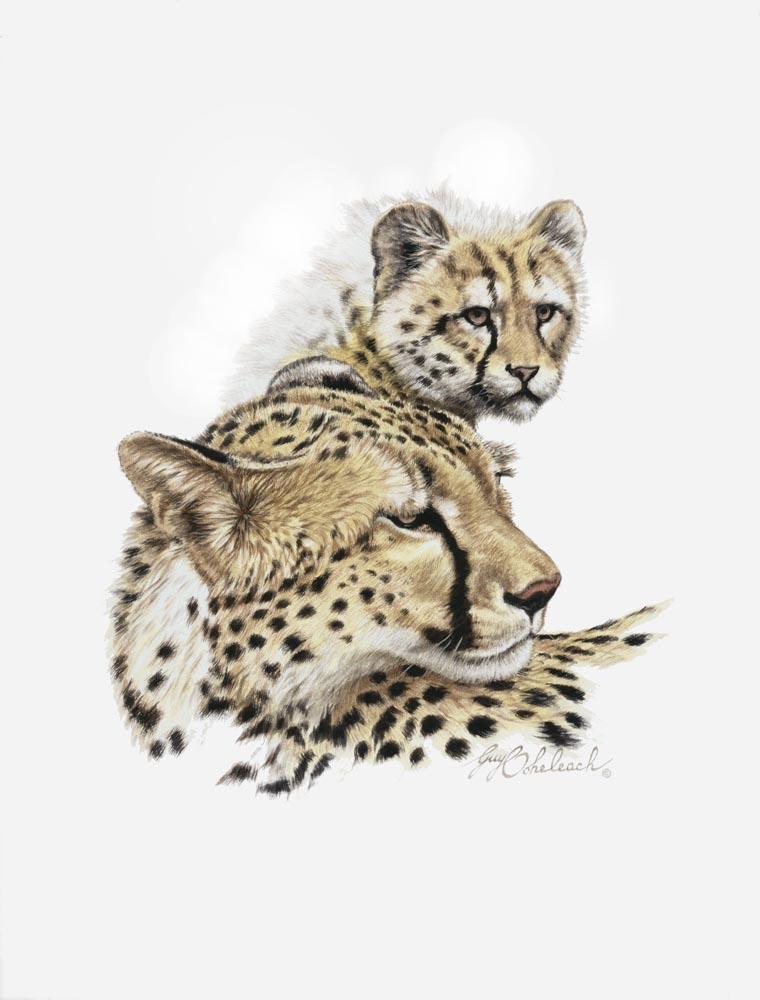 """""""Cheetah & Cub""""  -  15"""" x 18"""" """"Cheetah & Cub"""" - Portraits  Big Cat Heads  Cat Head Paintings"""
