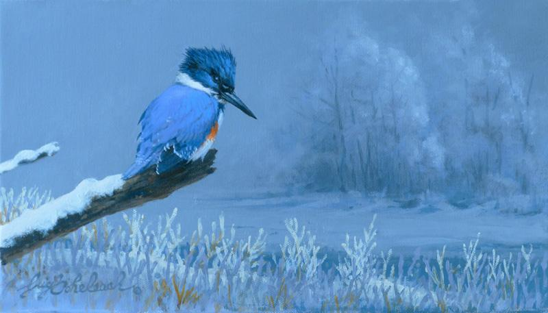"""""""Cold KingFisher""""  -  8"""" x 14"""" """"Cold KingFisher"""" - Birds  Song Birds  Game Birds"""
