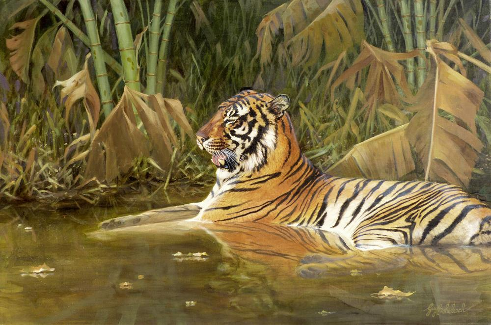"""Cooling Off""  -  24"" x 36"" ""Cooling Off"" - Tigers  Bengal Tiger  Siberian Tiger"