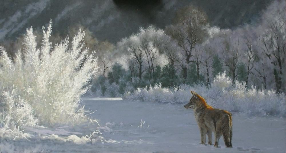"""Crystal Coyote""  -  24"" x 44"" ""Crystal Coyote"" - Canine  Wild Canine Paintings  Wolf and Fox Artwork"