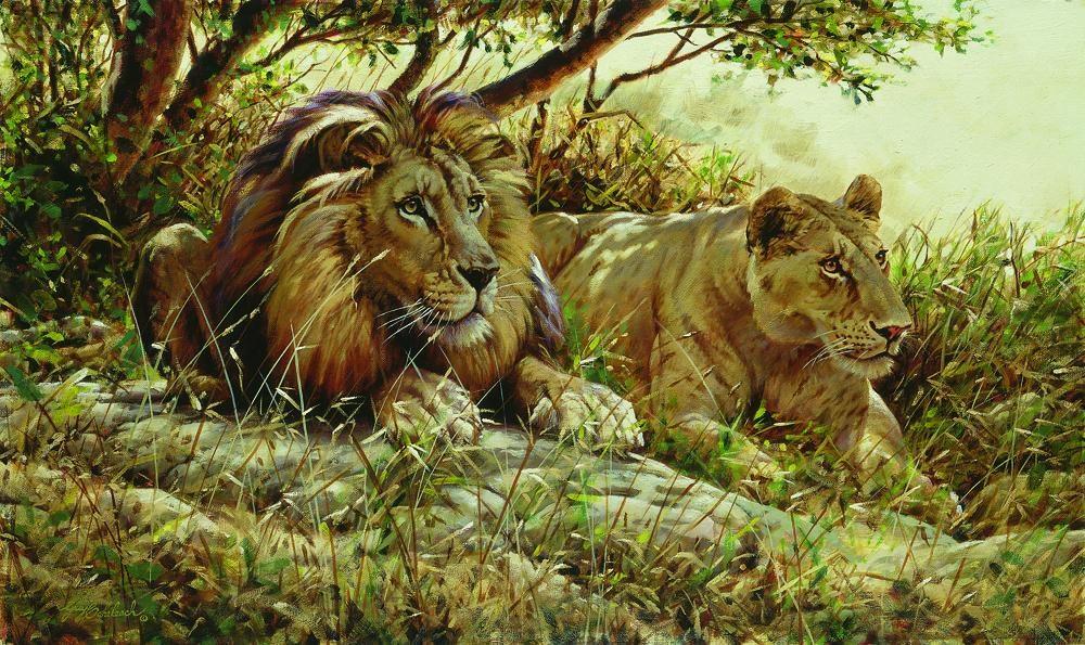 """Distraction""  -  24"" x 44"" ""Distraction"" - Lions  Lion Art  Lion Paintings"
