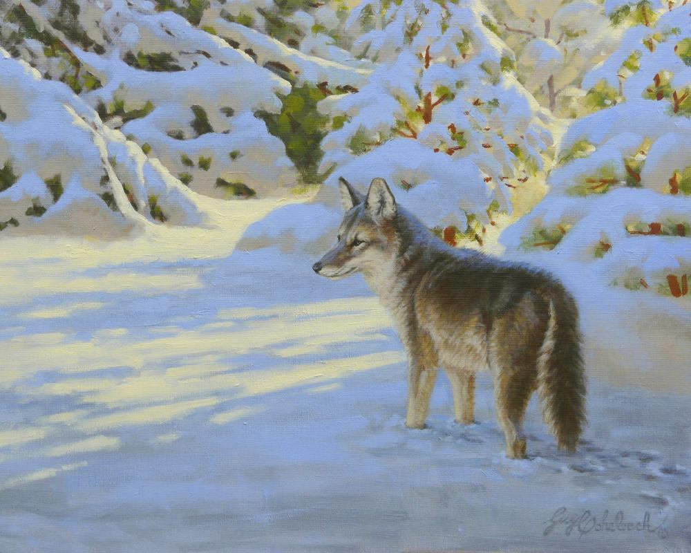 """Dusk Patrol""  -  16"" x 20"" ""Dusk Patrol"" - Canine  Wild Canine Paintings  Wolf and Fox Artwork"