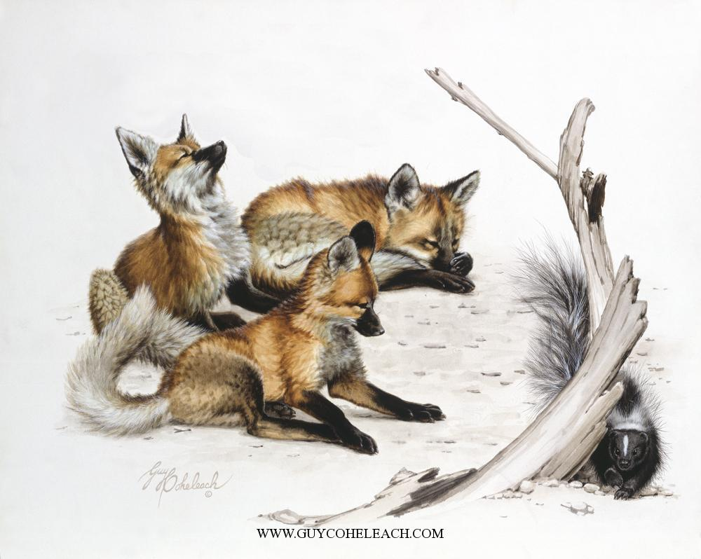 """""""Early Warning""""  -  20"""" x 28"""" """"Early Warning"""" - Canine  Wild Canine Paintings  Wolf and Fox Artwork"""
