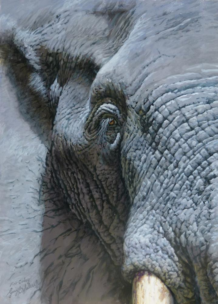 "Elephant Eye  -  29"" x 21"" ""Elephant Eye""  - Elephants  Elephant Paintings  Elephant Art"