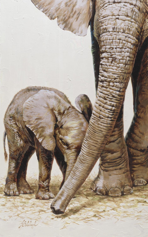 """Elephant Poster (Knoxville Zoo)""  -  25"" x 13"" ""Elephant Poster"" - Elephants  Elephant Paintings  Elephant Art"
