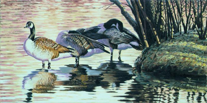 """Great Lakes Poster, Evening Geese""   -  15"" x 30"" ""Evening Geese"" - Water Birds  Waterfowl Paintings  Waterbird Paintings"