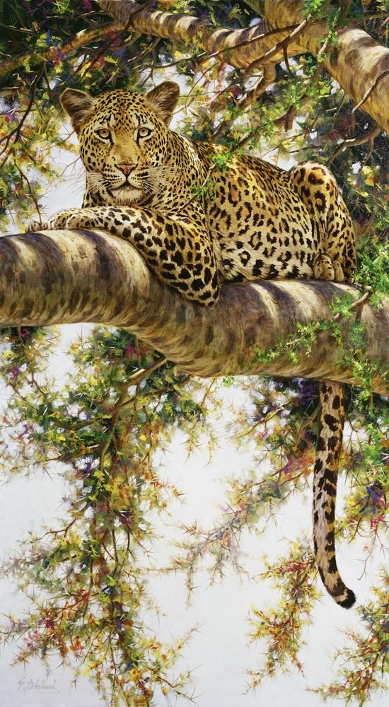 """Eye to Eye""   -  44"" x 24"" ""Eye to Eye"" - Leopards  Leoparp Paintings  Leopard Art"