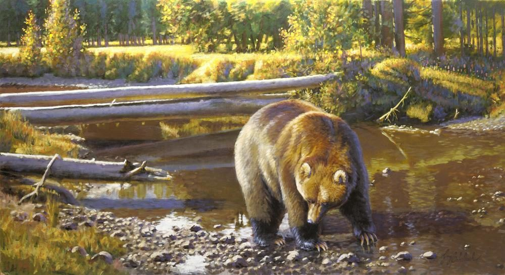 """Fattening Up""  -  30"" x 50"" ""Fattening Up"" - American Game  American Big Game  American Prey Animals"
