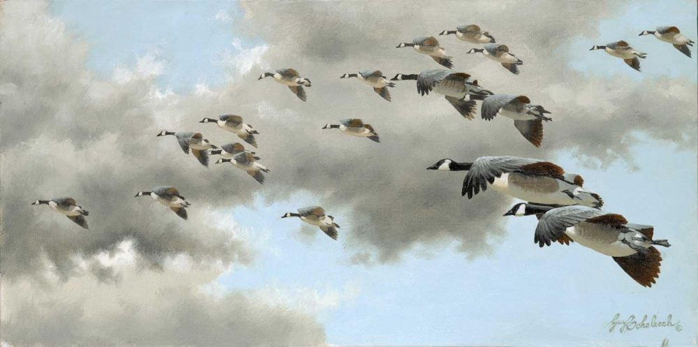 """""""Floating Down""""  -  12"""" x 24"""" """"Floating Down"""" - Birds  Song Birds  Game Birds"""