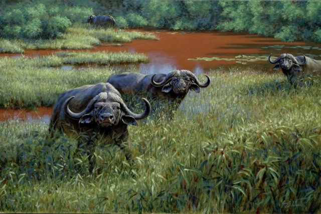 "Vince - Cape Buffalo <BR>24 X 36 ""Four Cape Buffalo"" - African Game  African Game Paintings  Plains Game Art"