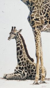 """Giraffe Poster (Knoxville Zoo)"" 25"" x 13"" ""Giraffe Poster "" - African Game  African Game Paintings  Plains Game Art"