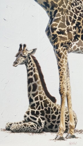 """Giraffe Poster (Knoxville Zoo)"" <BR>25"" x 13"" ""Giraffe Poster "" - African Game  African Game Paintings  Plains Game Art"
