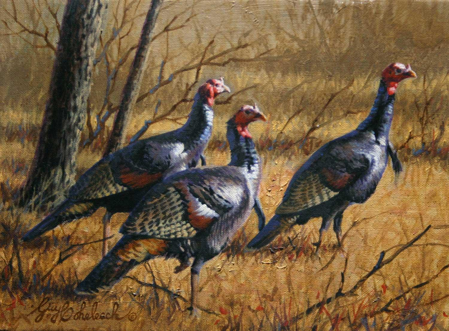 """Gobblers Three""  -  9"" x 12"" ""Gobblers Three"" - Birds  Song Birds  Game Birds"