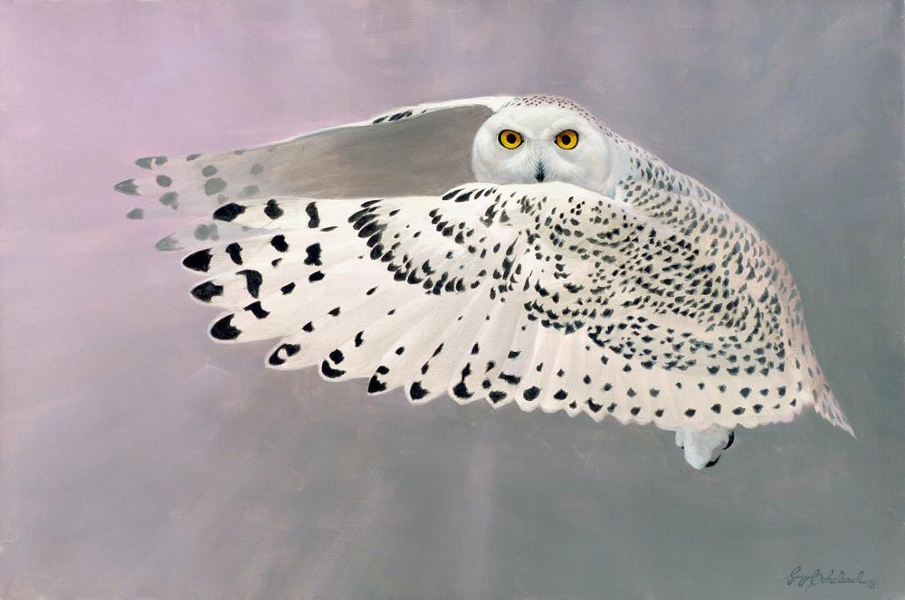 """Golden Eyes""  -  24"" x 36"" ""Golden Eyes"" - Owls  Owl Paintings  Owl Artwork"