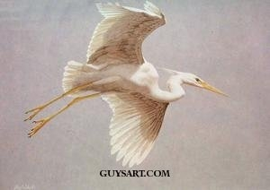 """""""Great White Heron"""" 34"""" X 46"""" Oil Painting, Stolen 1967 Brooklyn New York"""