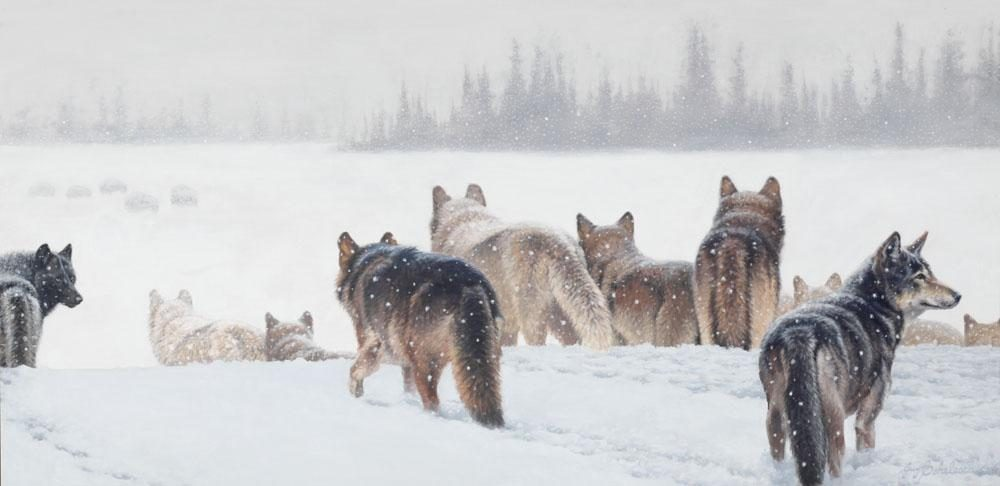 """Grim Evening""  -  24"" x 48"" ""Grim Evening"" - Canine  Wild Canine Paintings  Wolf and Fox Artwork"
