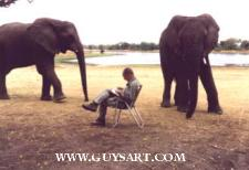 Guy Coheleach Sketching Elephants in Africa Guy at Work  Artist Biography  About Guy Coheleach