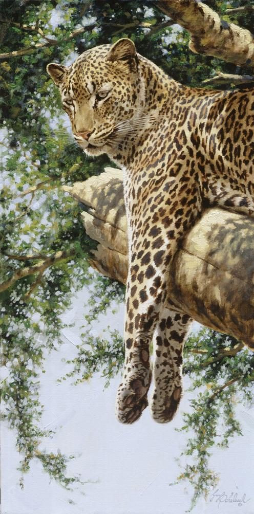 """Hanging Out""  -  12"" x 24"" ""Hanging Out"" - Leopards  Leoparp Paintings  Leopard Art"