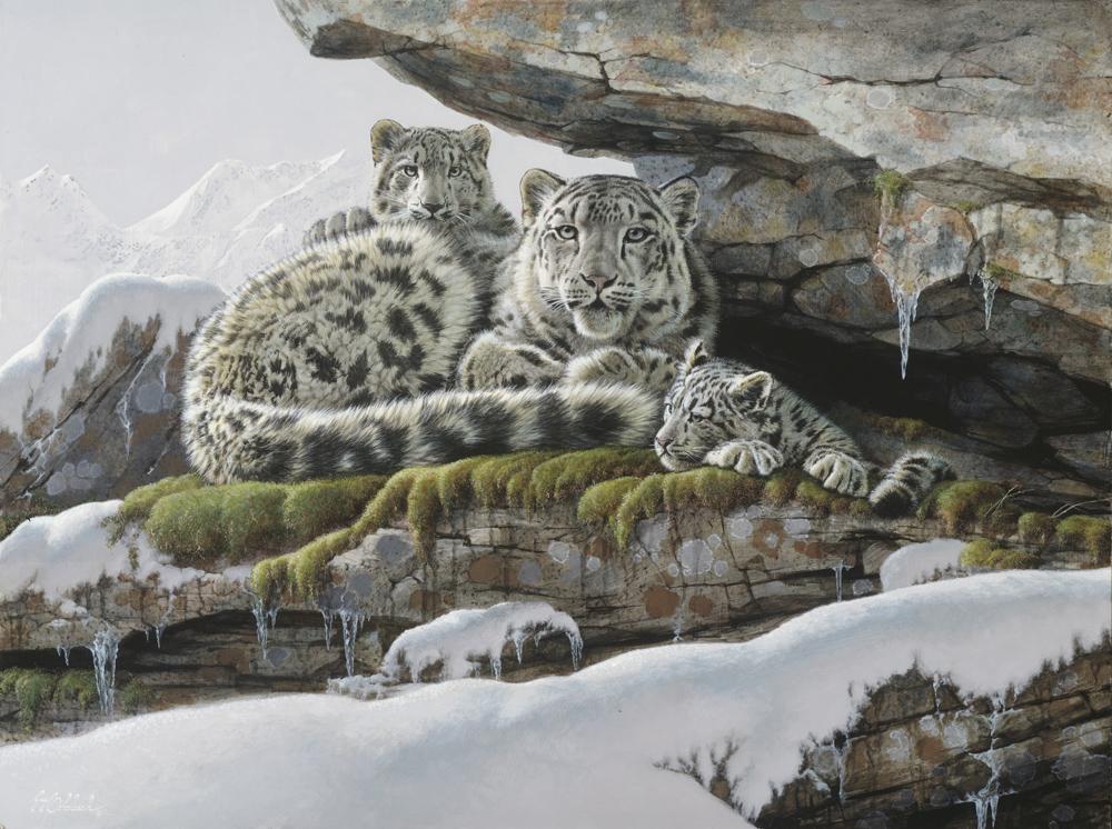 """""""Himalayan Hideout""""   -  30"""" x 40"""" """"Himalayan Hideout"""" - Leopards  Leoparp Paintings  Leopard Art"""