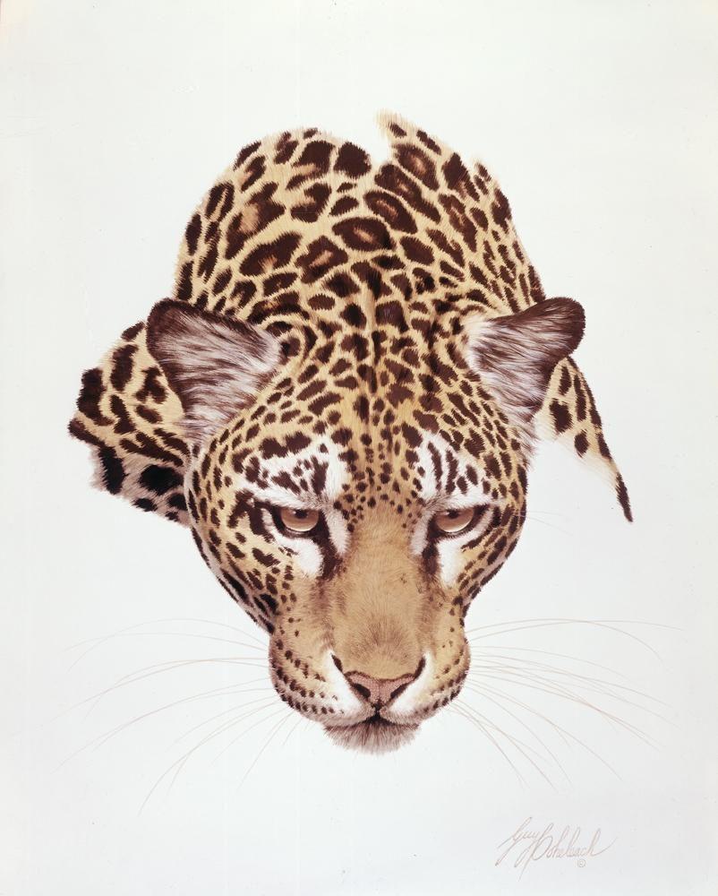 """Jaguar Head""  -  16""x20"" ""Jaguar Head"" - Portraits  Big Cat Heads  Cat Head Paintings"
