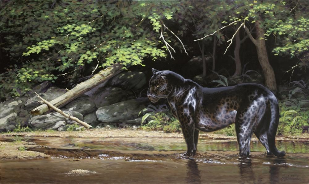 """Jungle Fishing""  -  30"" x 50"" ""Jungle Fishing"" - Leopards  Leoparp Paintings  Leopard Art"