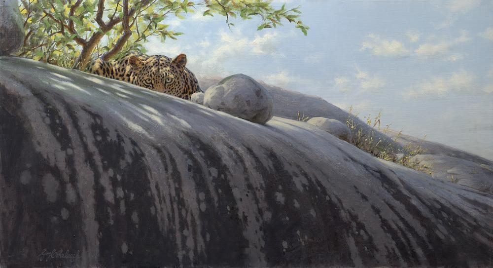 """Kopje Ambush""   -  24"" x 44"" ""Kopje Ambush"" - Leopards  Leopard Paintings  Leopard Art"