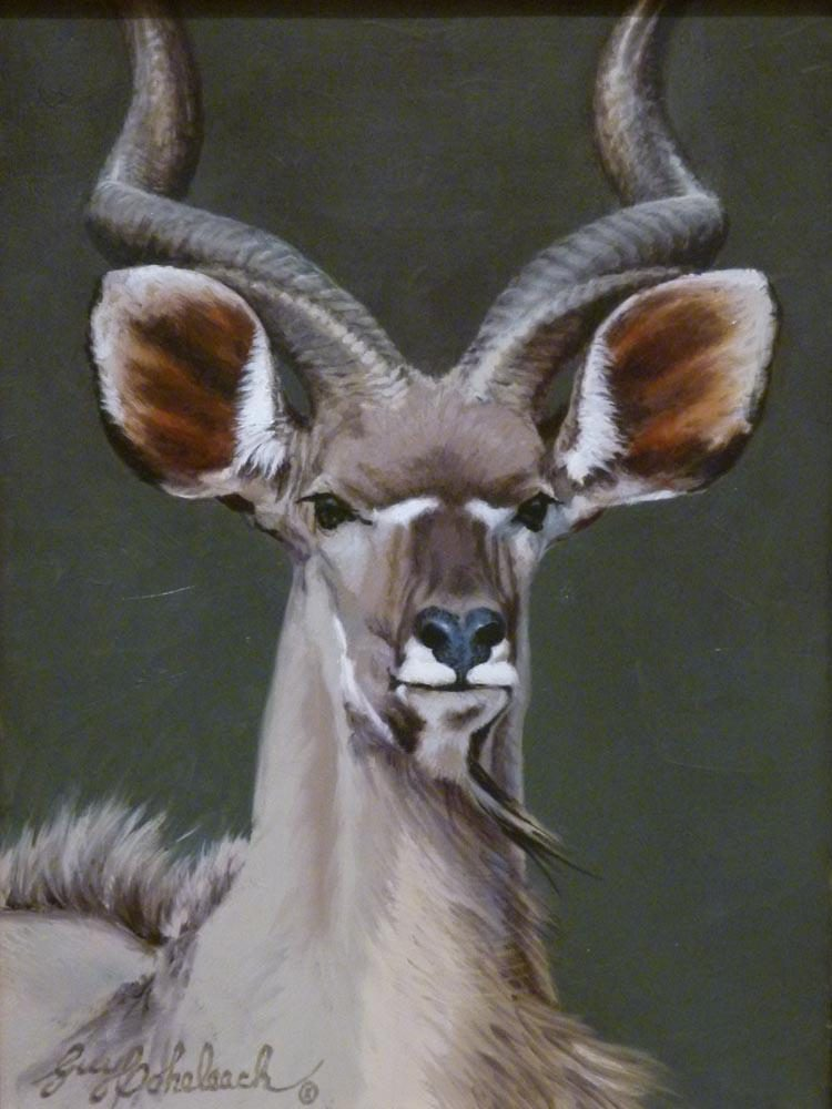 """Kudu Head""<BR>12 X 9 ""Kudu Head"" - African Game  African Game Paintings  Plains Game Art"
