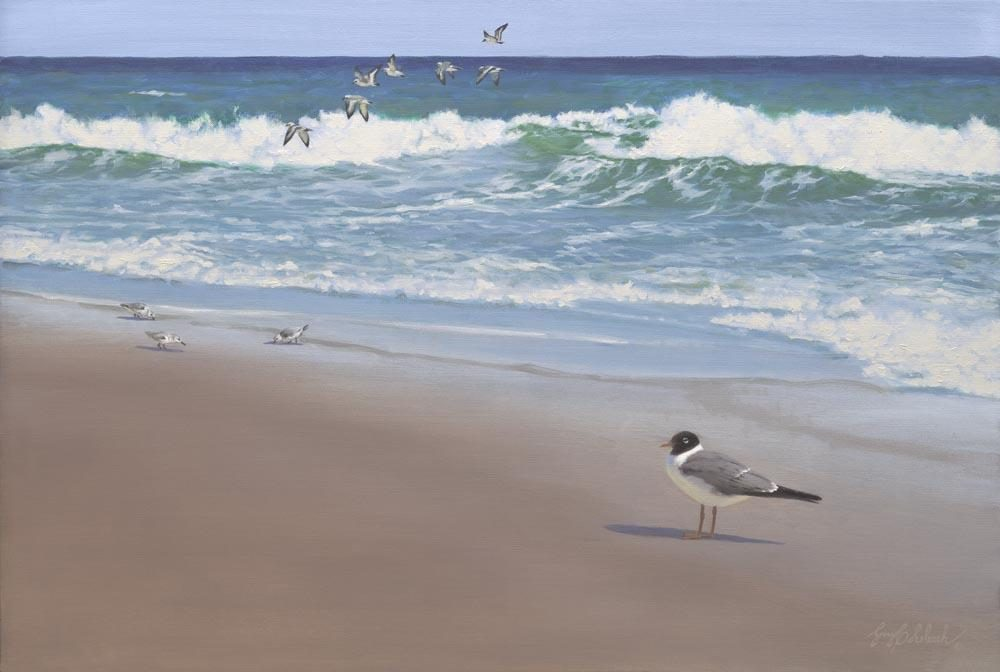 """Laughing Gull Beach""  -  24"" x 36"" ""Laughing Gull Beach"" - Water Birds  Waterfowl Paintings  Waterbird Paintings"