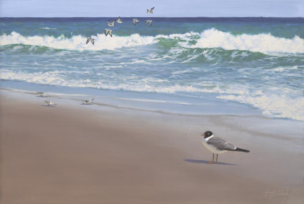 """""""Laughing Gull Beach""""  -  24"""" x 36"""" """"Laughing Gull Beach"""" - Water Birds  Waterfowl Paintings  Waterbird Paintings"""