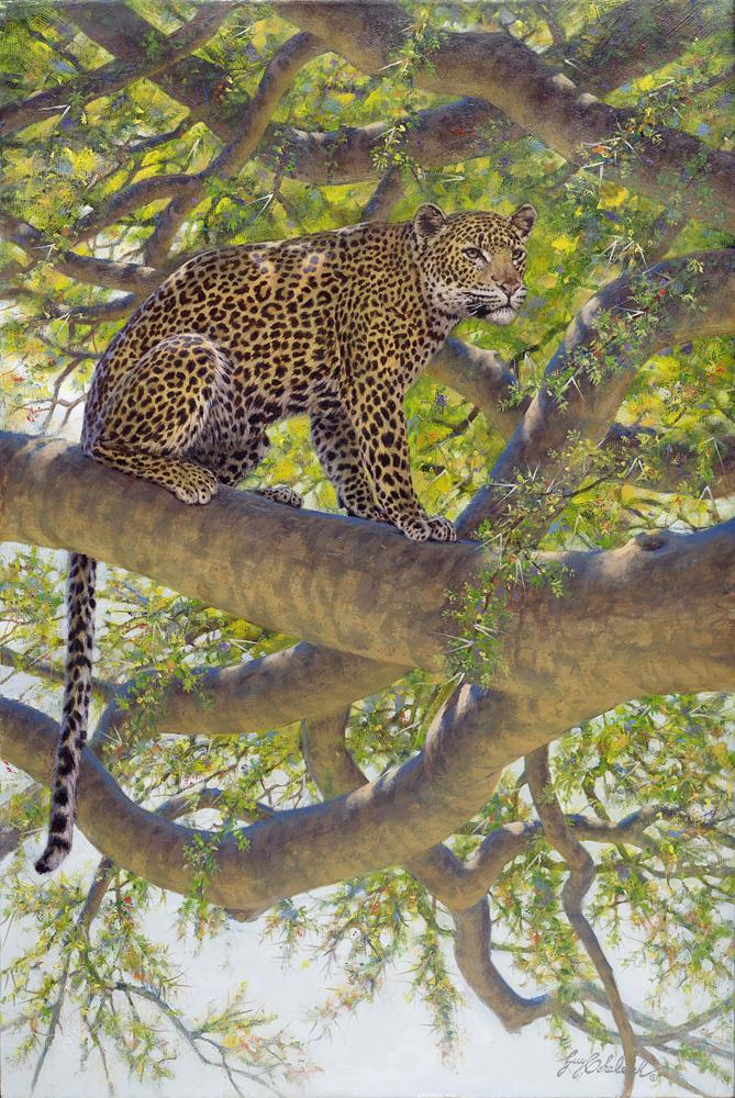 """Leopard Look""  -  36"" x 24"" ""Leopard Look"" - Leopards  Leoparp Paintings  Leopard Art"
