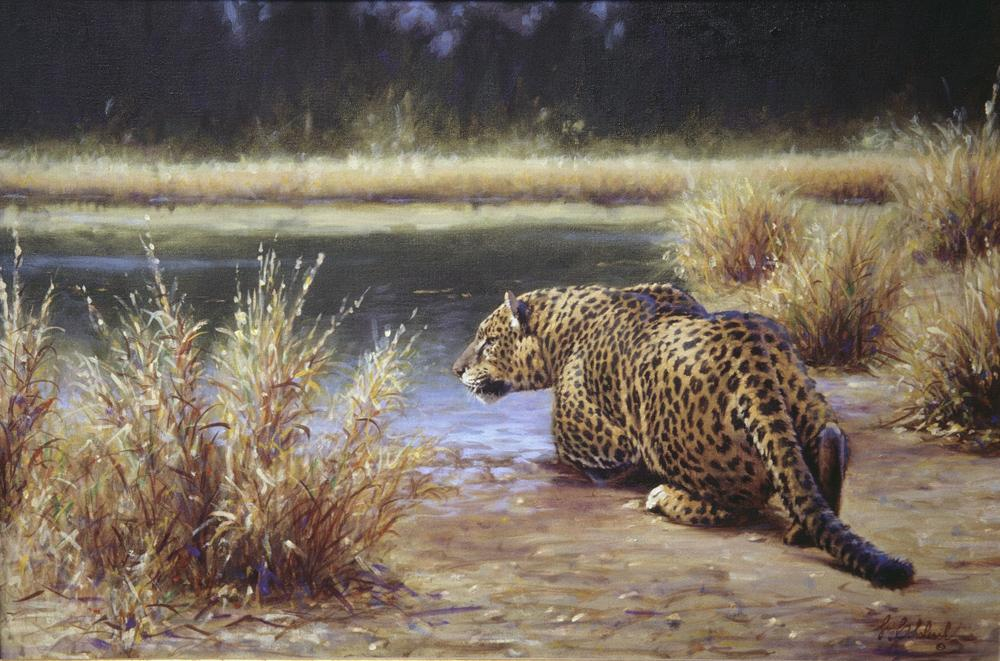 """Leopard Stalk""  -  14"" x 20"" ""Leopard Stalk"" - Leopards  Leoparp Paintings  Leopard Art"