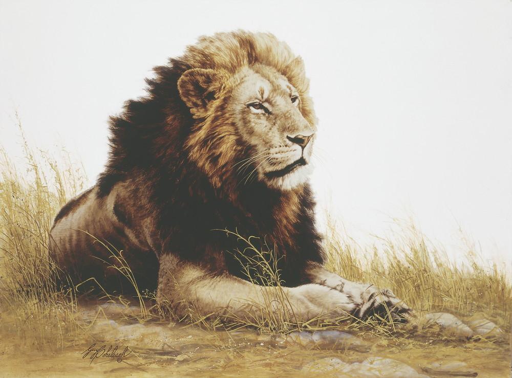 """""""Lion""""  -  30"""" x 40"""" """"Lion"""" - Lions  Lion Art  Lion Paintings"""