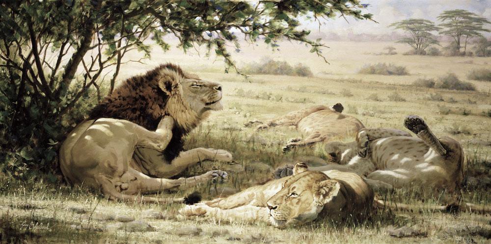 """Lion Around""  -  36"" x 72"" ""Lion Around"" - Lions  Lion Art  Lion Paintings"